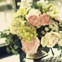 Растений и цветов